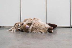 Закрытие «Кругозора», «Сырные дни» в Москве и Comic Con