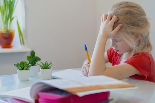 Как учителя, школьники иродителиперенесли переход надистанционное обучение
