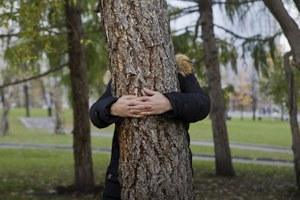 «Драма 234»: Как в Екатеринбурге прощались с деревьями, которые могут вырубить ради храма
