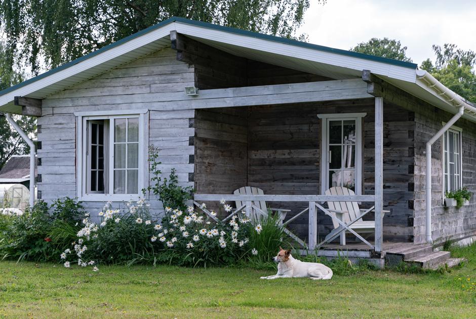 «Финский» дом с пожарным прудом на берегу реки Оредеж