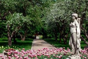 Царский сад, квартира Южина и«дом наножках»: Куда идти в«Ночь музеев»