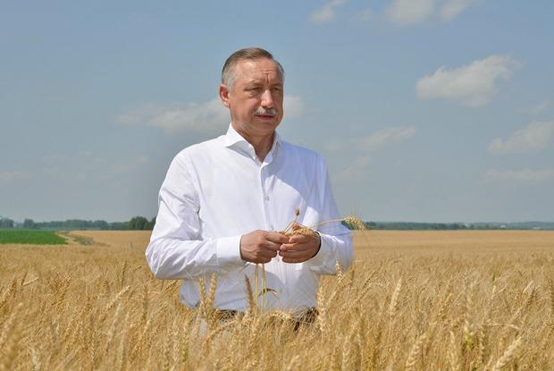 Почему Беглов? 6 вопросов обудущих губернаторских выборах вПетербурге
