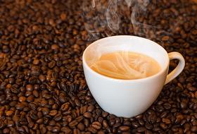 Покрепче, пожалуйста: 6 мест в Сочи, где помогут подобрать кофе на любой вкус