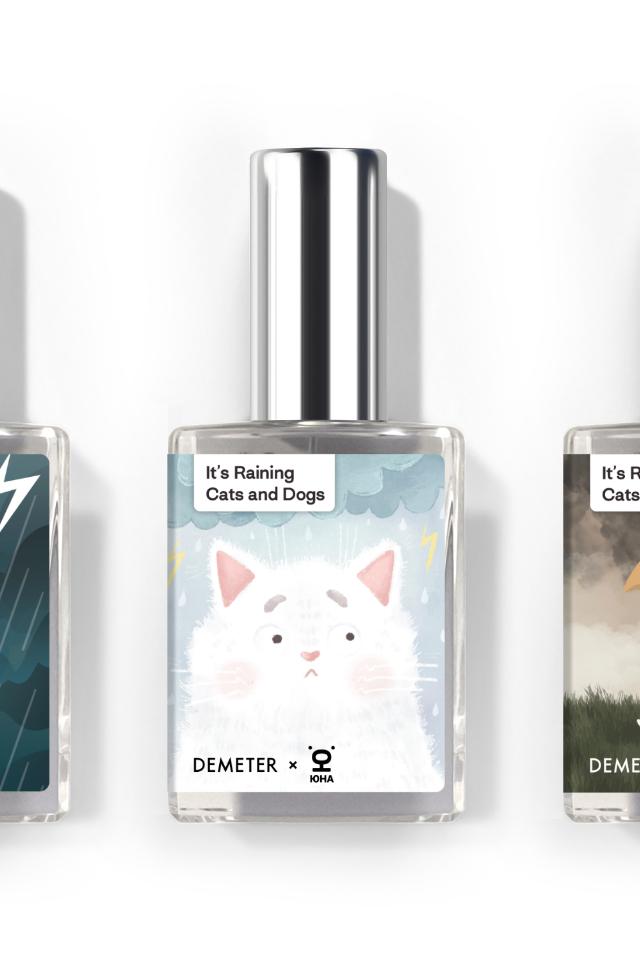 «Котик боится грозы»: Demeter выпустил аромат вподдержку бездомных животных