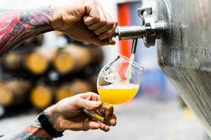 Что такое веганское ибезглютеновое пиво?