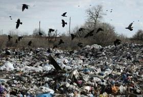 Госдума приравняла сжигание мусора кпереработке. Как такое возможно?