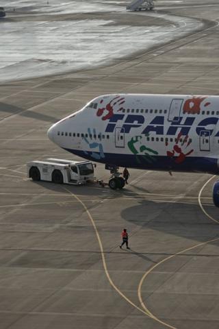 Россия возобновит полеты вЕгипет, ОАЭ иМальдивы