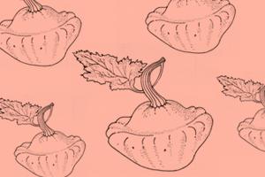 Сезон молодых овощей: Патиссон