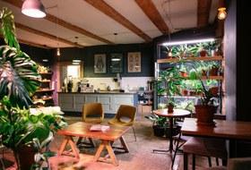 Голландский бар Nacht Wacht, поп-ап-ресторан в «Пассаже» иинклюзивное кафе «Огурцы»