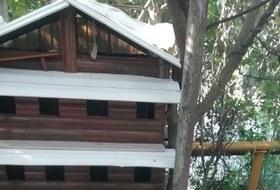 В Сочи снесли дом для животных