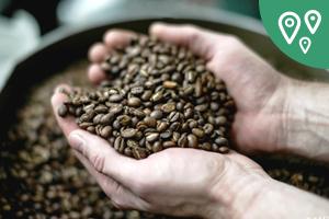 Новая география: Как американец изСибири напоил кофе всю страну