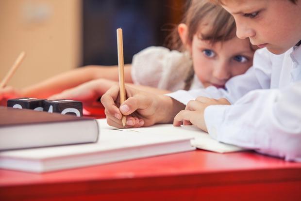 Стоит ли обучать ребёнка посистеме Жохова?