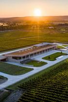 Две винодельни из Краснодарского края вошли в топ-50 лучших в мире