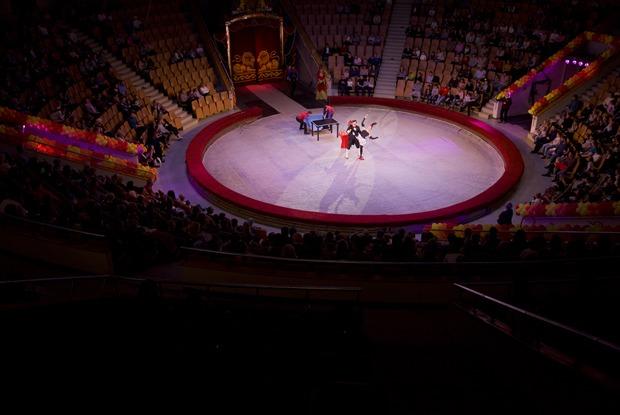 «Я работаю в Екатеринбургском цирке»