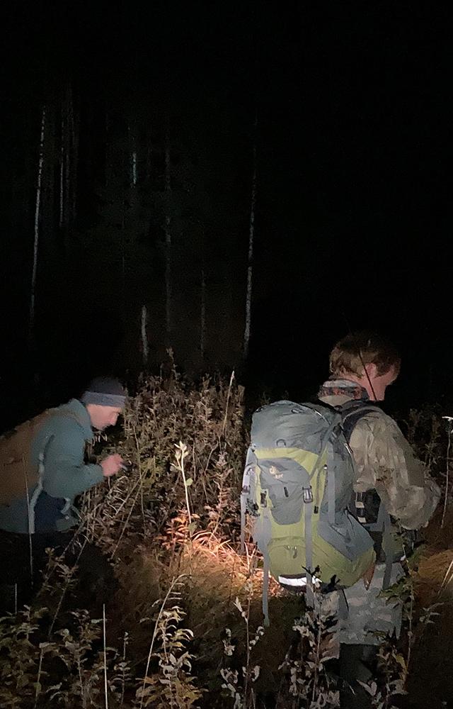 Как яискала человека споисковым отрядом «Лиза Алерт»
