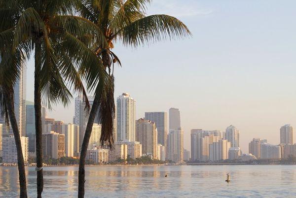 Сколько стоит жизнь в Майами