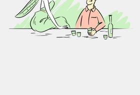 Сколько абсента нужно выпить, чтобы увидеть фею?