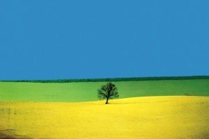 Планы на весну: Выставки, балет, опера