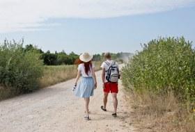 5 классных маршрутов длядетей попарку «Никола-Ленивец»