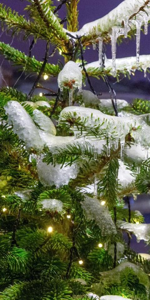 Наследующей неделе вМоскву придет сибирская зима