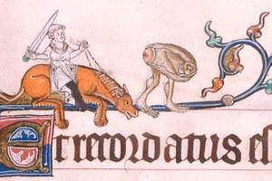 Авторы книги «Страдающее Средневековье» — о«дурацком епископе», гениталиях настенах храмов имагии