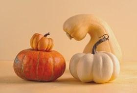 Тыква, каштаны, дыня ибелые грибы