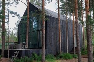 Дом с окном вместо стены всосновом бору