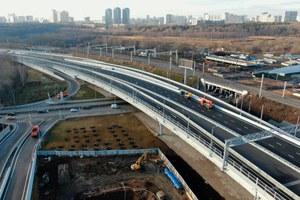 Ради платного дублера Кутузовского проспекта вМоскве вырубят тысячи деревьев
