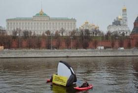 В Москве-реке задержали косатку