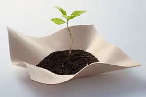 Опцион созрел: Как раздавать доли бизнеса сотрудникам компании
