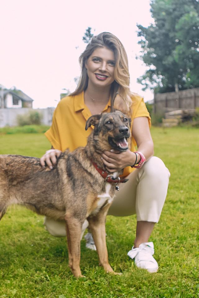 Live-подкаст отом, как взять собаку изприюта
