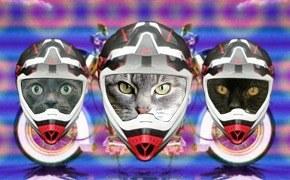 Королева бензоколонки: женщины на мотоциклах