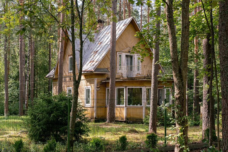 Самый интеллигентный поселок России: Как живет Комарово