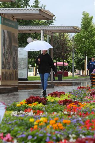 Москвичей ждут кратковременные дожди сгрозами