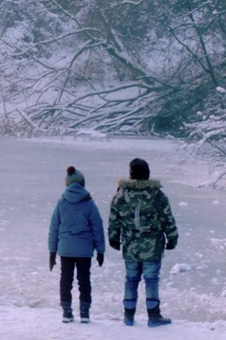 В Okko пройдет онлайн-фестиваль европейского кино