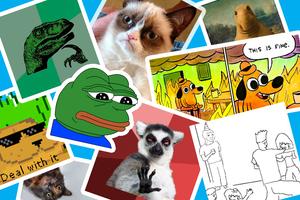 Каждому свое: угадайте предпочтения героев ваших любимых мемов