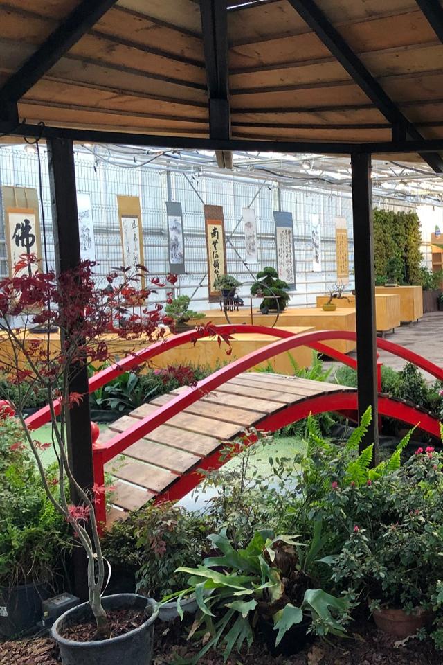 В«Аптекарском огороде» открылась экспозиция японских искусств