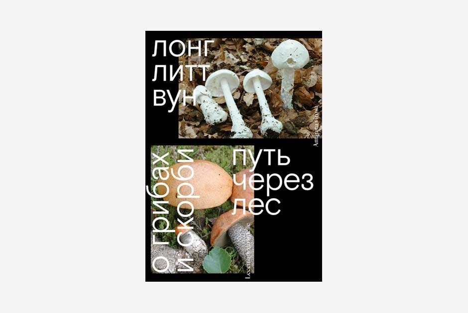 Мысли о грибах и попытка  с помощью них пережить смерть мужа —  в книге «Путь черезлес. Огрибах искорби»