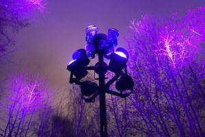 «Световая вакханалия»: Чем подсветка на Воробьевых горах опасна для людей и животных
