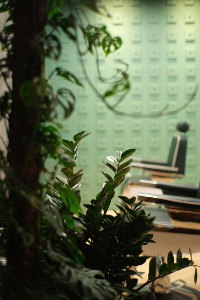 В«Зиларте» откроется салон красоты скофейной точкой отресторана Blanc