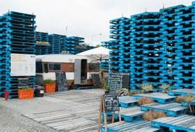 Как жители разрушенного Крайстчёрча восстанавливают связь с городским пространством
