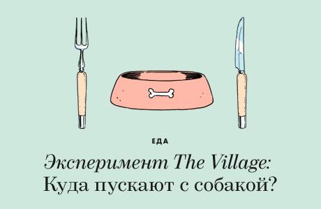 Эксперимент The Village: Куда пускают с собакой?