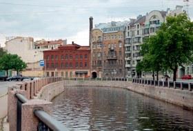 Почему в Петербурге исчезают деревья