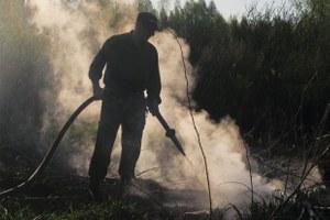 «2010 год может повториться» — Greenpeace о пожарах вПодмосковье